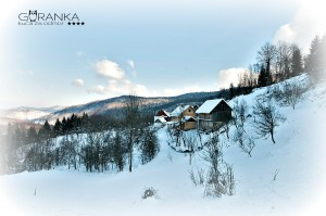 Snježna šetnja